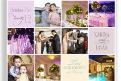 Parties and Special Occasions 2012